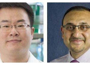 Drs. Donghun Shin and Paul Monga Awarded R01