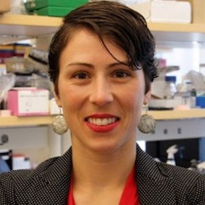 Dr. Marlies Meisel publishes review in Trends in Immunology
