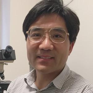 Qingde Wang, MD, PhD