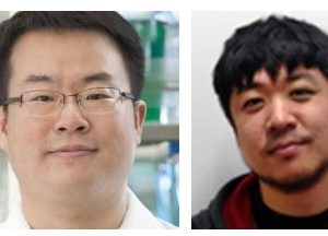 Dr. Donghun Shin is senior author on article in Hepatology