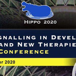 HIPPO Virtual Conference