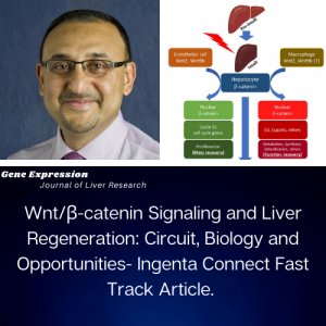 Dr. Paul Monga publishes article in GE Liver