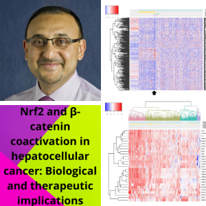 Dr. Paul Monga's group publishes manuscript in Hepatology