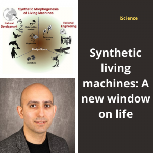 Dr. Mo Ebrahimkhani and colleague publish manuscript in iScience