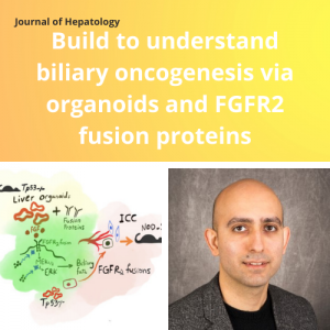 Dr. Mo Ebrahimkhani and colleague publish editorial in Journal of Hepatology