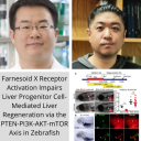 Dr. Donghun Shin, Dr. Sungjin Ko, and colleagues publish in Hepatology