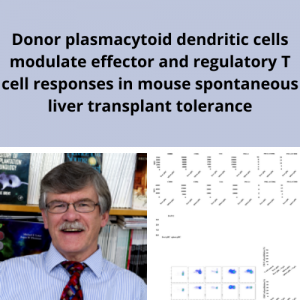 Dr. Angus Thomson publishes article in American Journal of Transplantation
