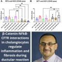 Dr. Paul Monga and collaborators publish study in eLife